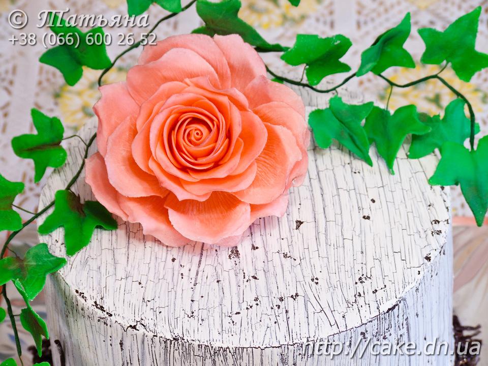 Торт кракелюр фото